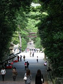出雲大社01 勢溜から松の参道を望んで.JPG