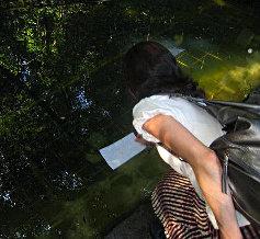 八重垣神社12 鏡の池.jpg