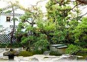 旅館くらしき 中庭