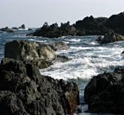 室戸岬海岸