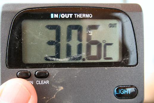 ネグロ水温.jpg