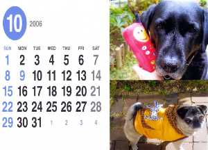 06100110月カレンダー