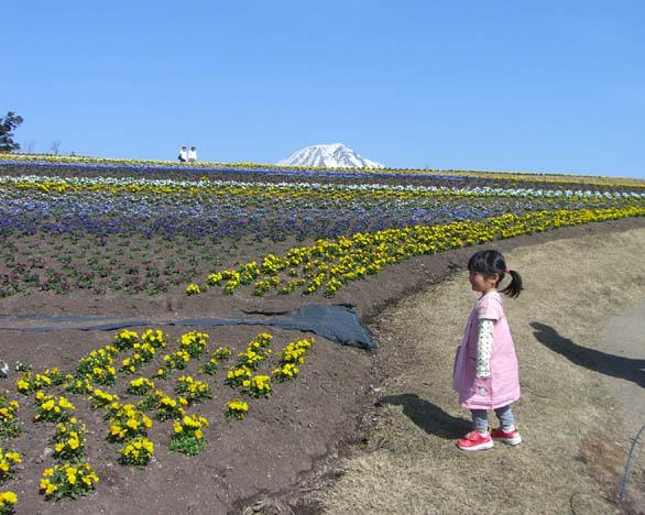 花畑1.jpg
