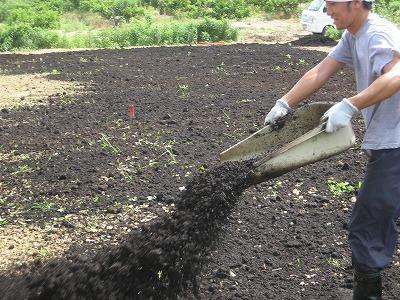 堆肥をまく菊池君.jpg
