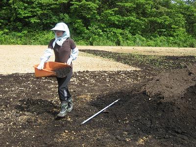 堆肥をまく八ちゃん.jpg