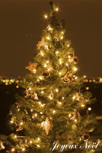 xma tree.jpg