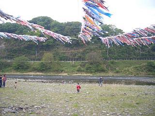 高田橋の鯉のぼり