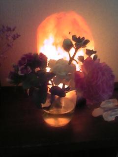 花とロロちゃん.jpg
