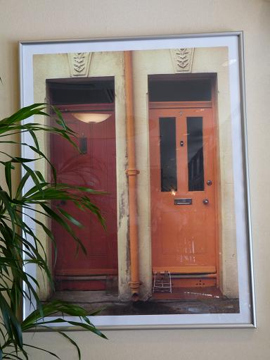 写真と植物.JPG