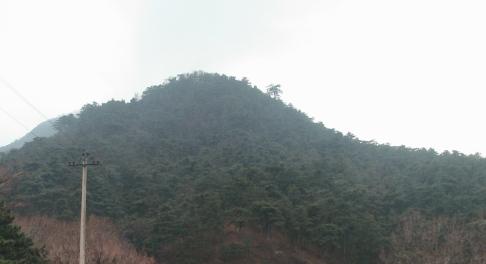 森林公園があり、山々に囲まれています