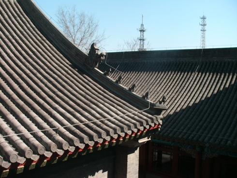 お寺の屋根