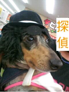 松田優作風2