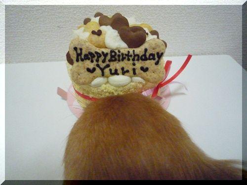 Celebわんこケーキ ユリ用2.JPG