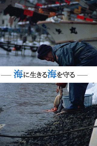 「海の羽根」募金活動