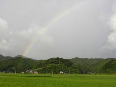 蕨岡虹.JPG