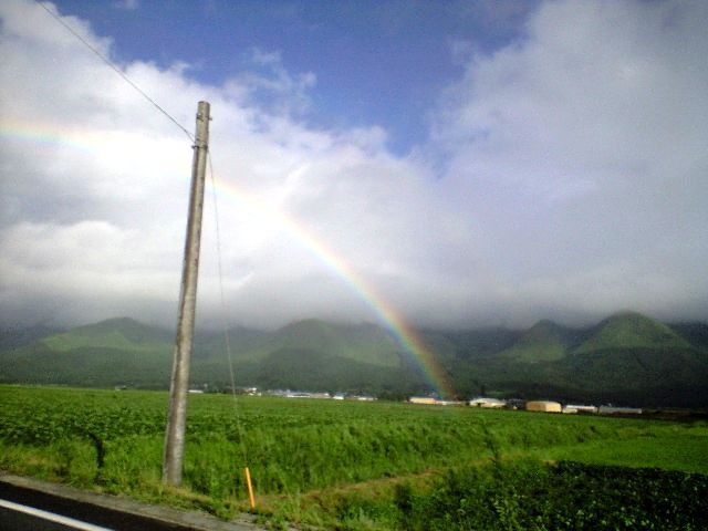 虹でかいぜ!