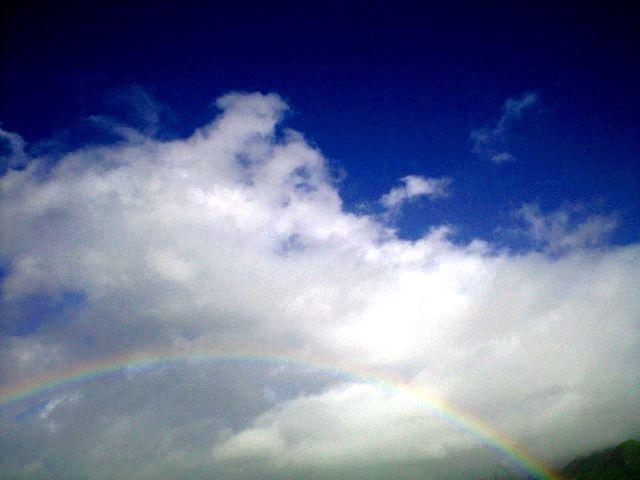 夏の青空に大きな虹だぜ!
