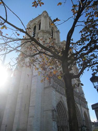 フランス2010 1160.jpg