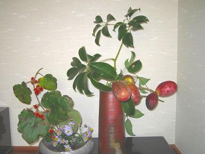 野イチゴとアケビ