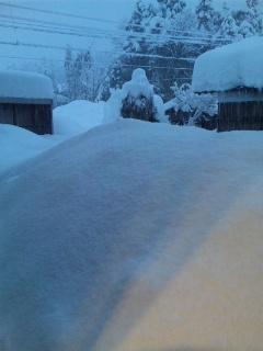 大雪比べてみて.jpg
