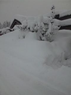 大雪隣の家.jpg