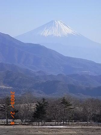20090208.jpg
