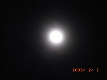 20090208c.jpg