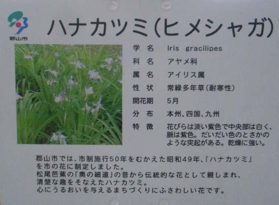 花かつみ説明看板