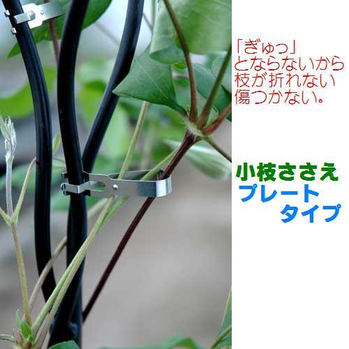 小枝ささえプレート.JPG