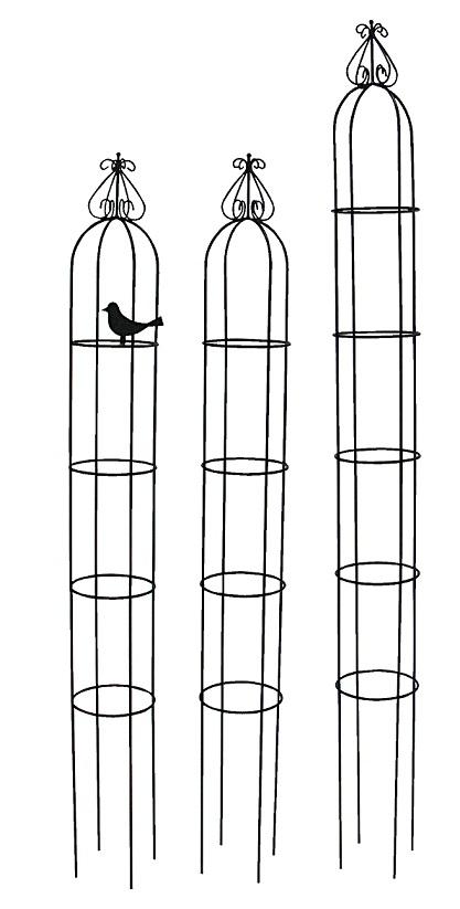 p2-MO (2).jpg