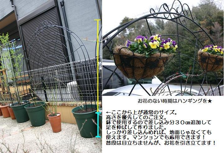 画像 010 (3).JPG