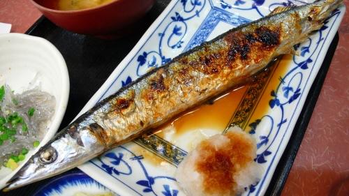 新秋刀魚.jpg