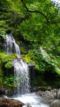吐龍の滝2.jpg