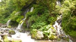 吐龍の滝3.jpg
