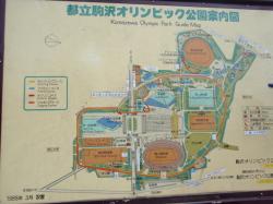 200803020018.jpg
