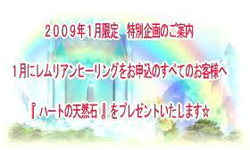 2009/1限定 特別企画