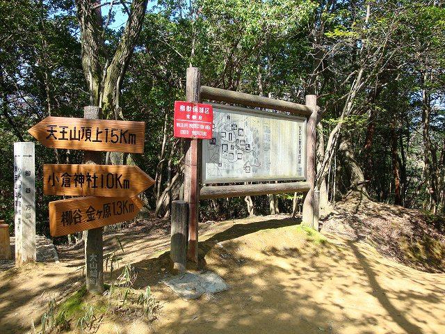 天王山ハイキングコース02