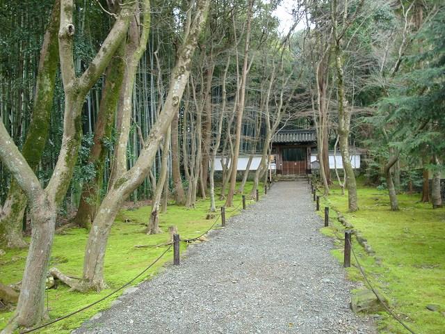 京都一周トレイル西山01