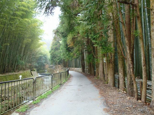 京都一周トレイル西山03