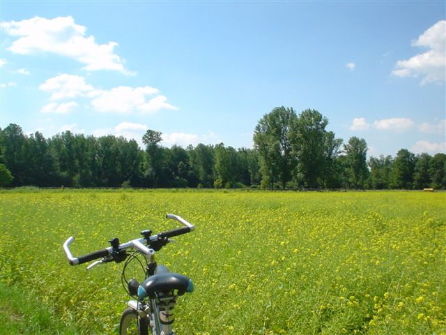 Bike Tour Erft 10.07.05