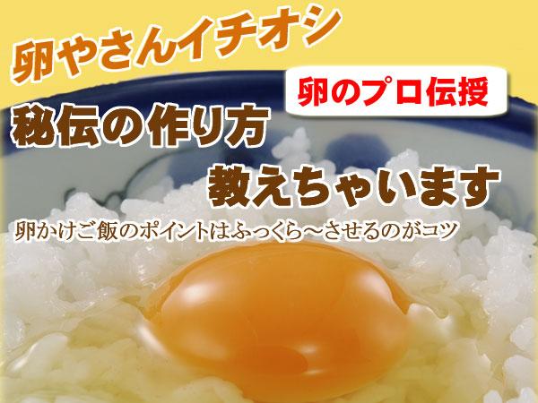 卵かけご飯のポイント教えちゃいます