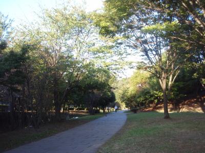 緑道2.jpg