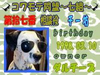 KOWAMOTE017.jpg