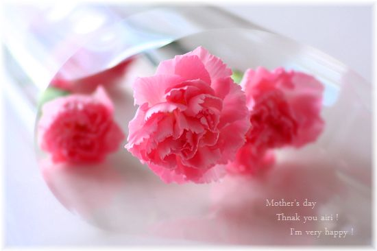 508母の日あいりがくれたお花.jpg