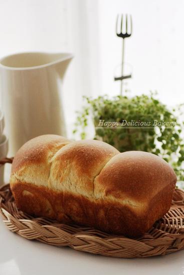ヨーグルト酵母で食パン.jpg