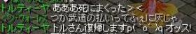 トルさん復帰宣言☆.JPG