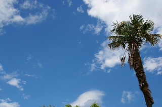 天気20080704-1