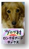 にほんブログ村.gif