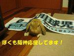 三原A 067aミニ.jpg
