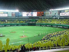 福岡ドーム7回